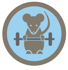 gym-rat-foursquare