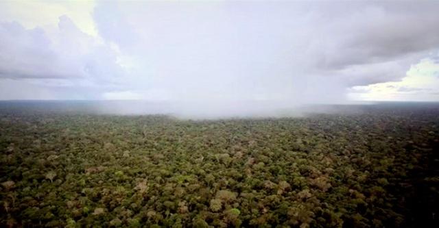 baraka amazonia amazon